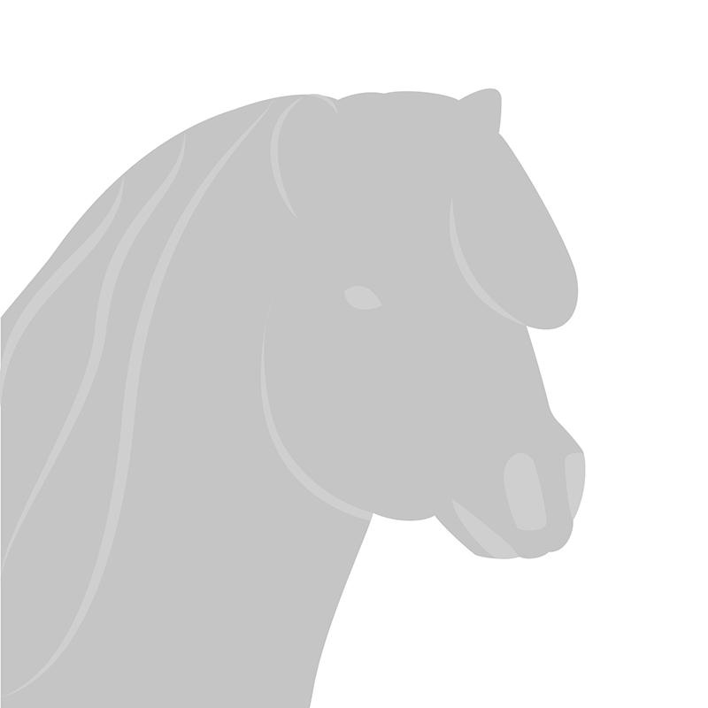 Geen afbeelding bij Pony